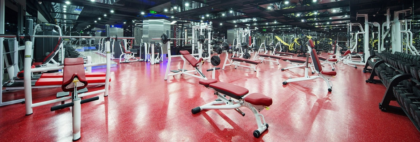Gyms and Fitness Clubs