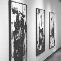 Scapes Exhibition
